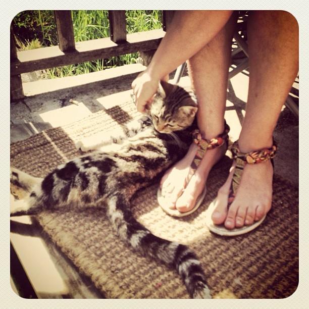 Alix Angelis Feet