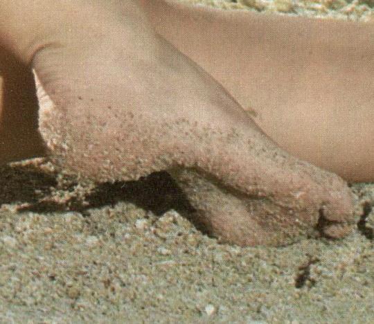 Leticia Birkheuer Feet