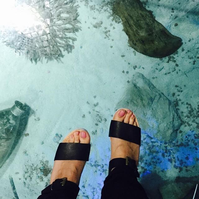 Zirdeli Anna Feet