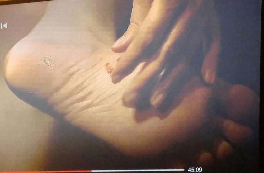 Whitney Able Feet