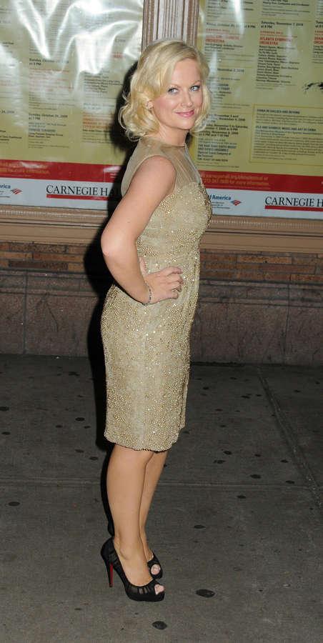 Amy Poehler Feet
