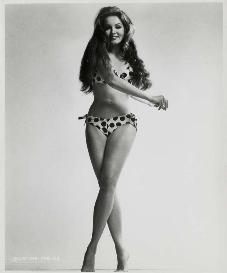 Julie newmar topless #9