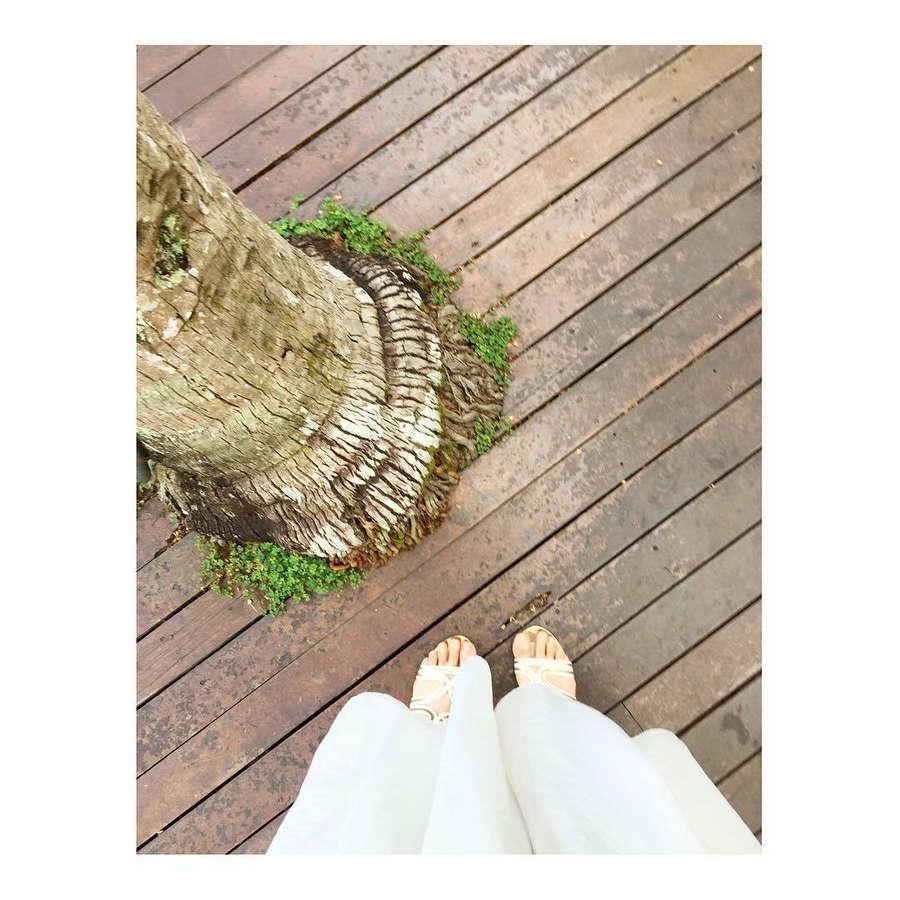 Yumi Kato Feet