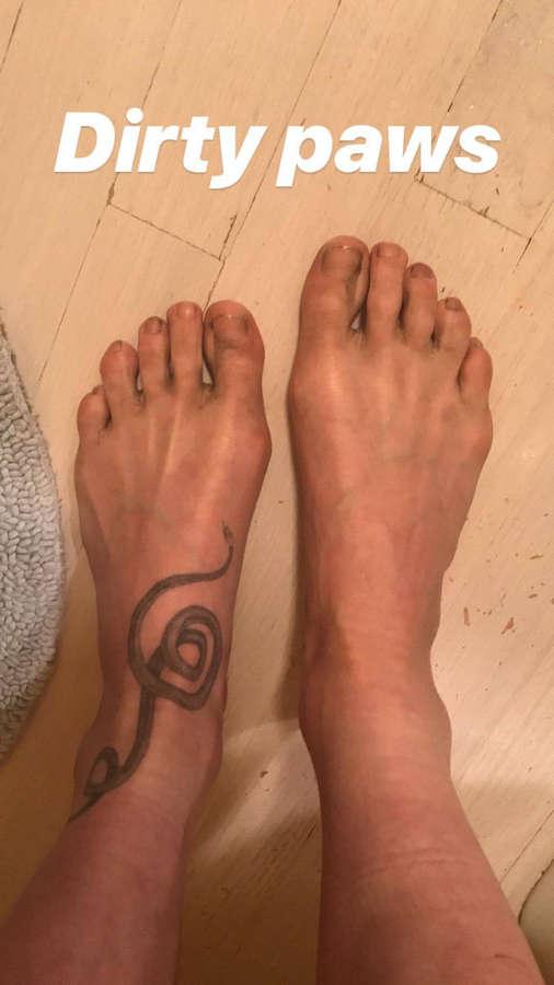 Langley Fox Feet