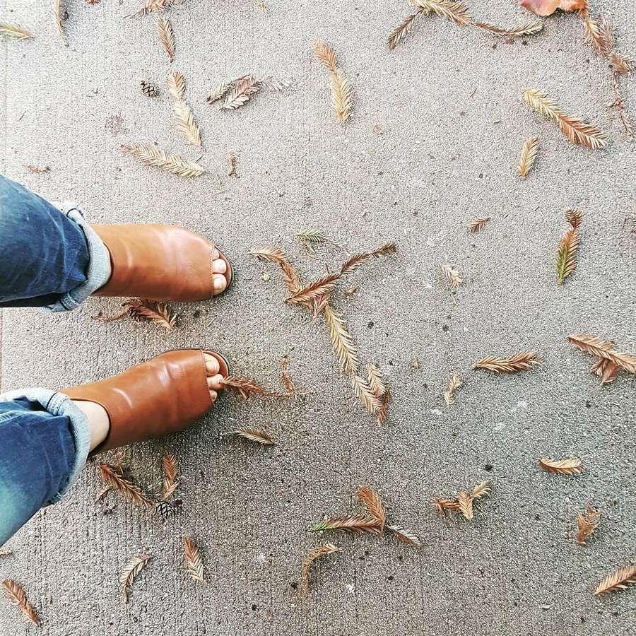 Sascha Alexander Feet
