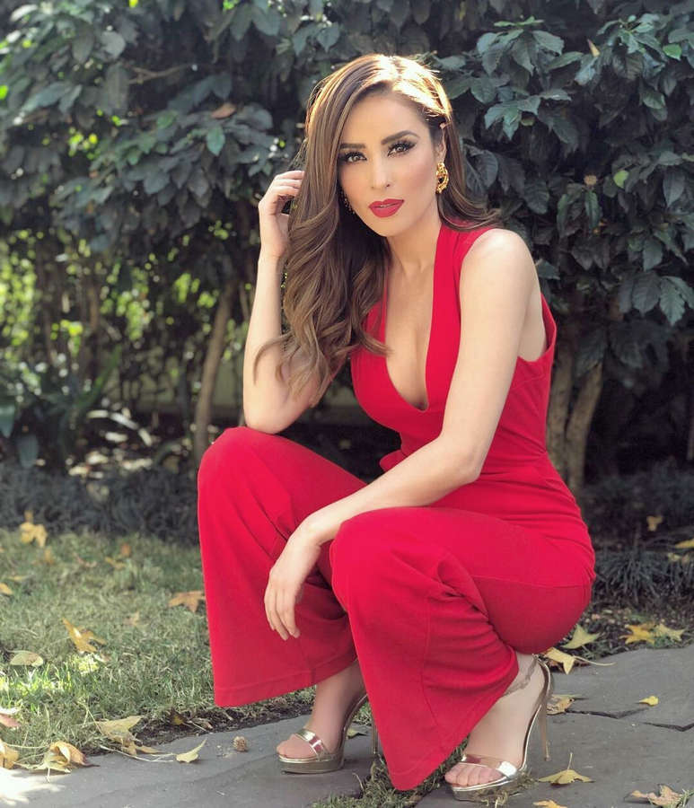 Cynthia Rodriguez Feet