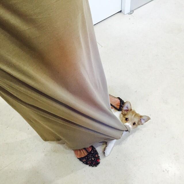 Barbara Guimaraes Feet