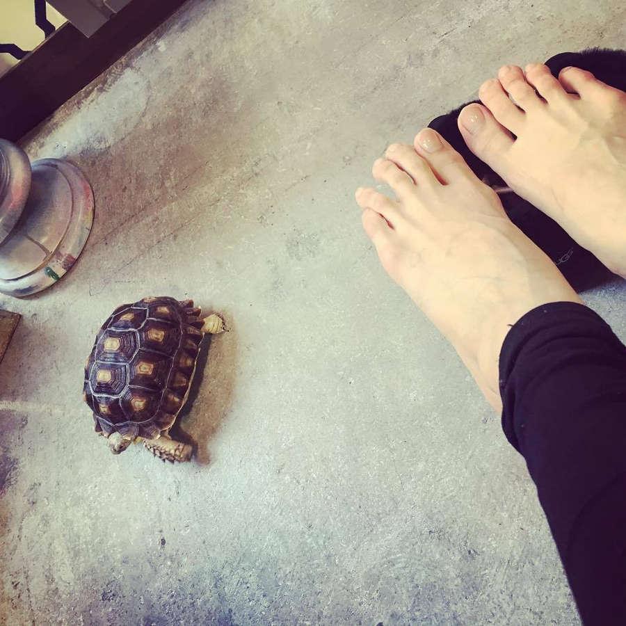 Kurea Hasumi Feet