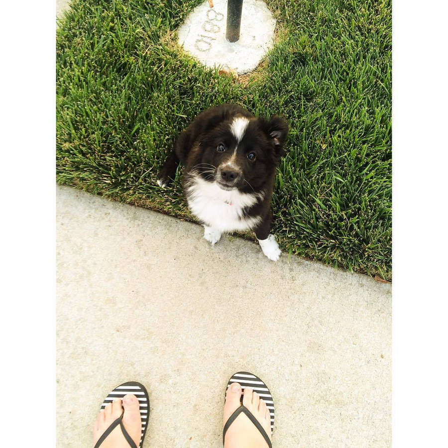 Maddie Zahm Feet