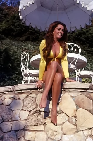 Edy Williams Feet