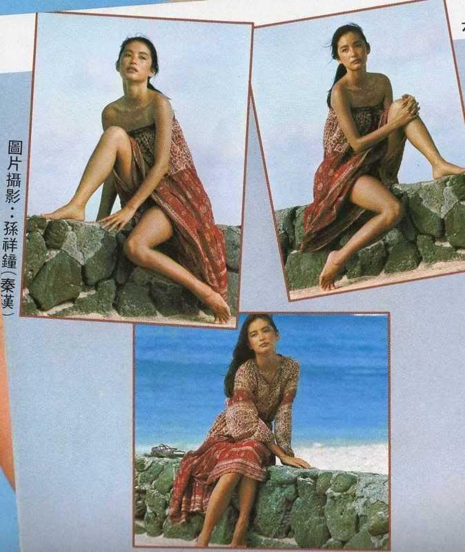 Brigitte Lin Feet