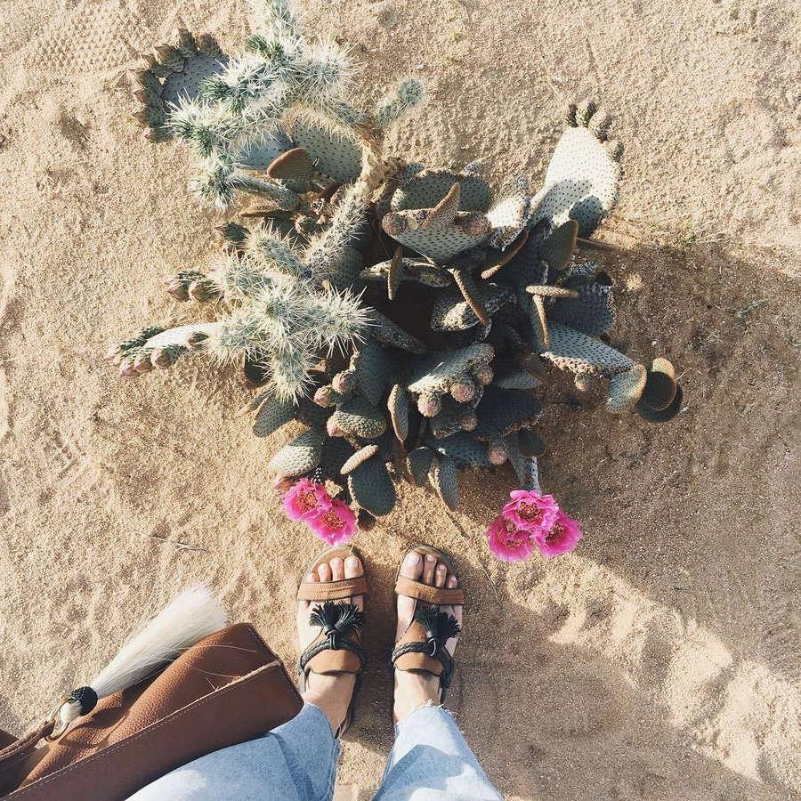 Tienlyn Jacobson Feet