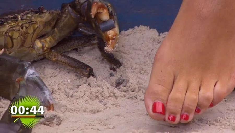 Sophia Wollersheim Feet