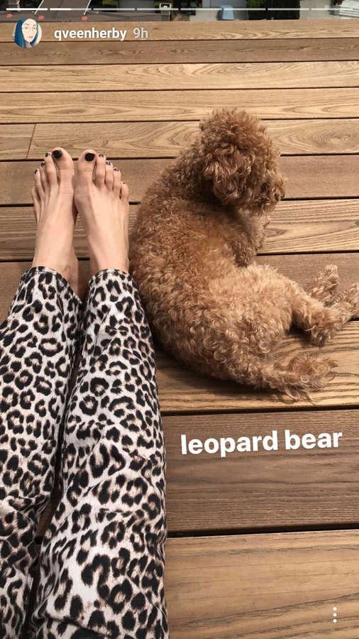 Amy Heidemann Feet