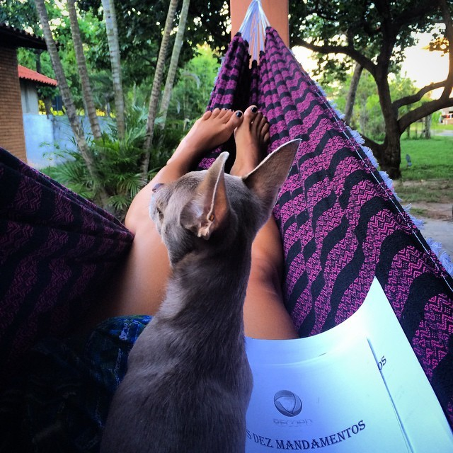 Bianka Fernandes Feet