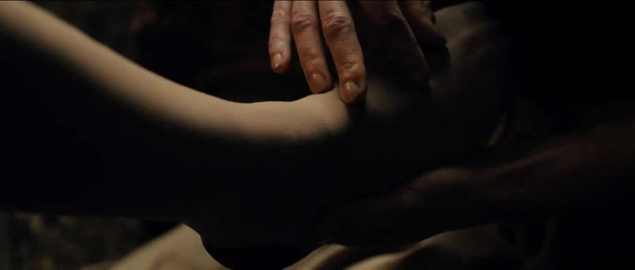 Sidse Babett Knudsen Feet