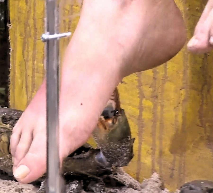 Helena Furst Feet