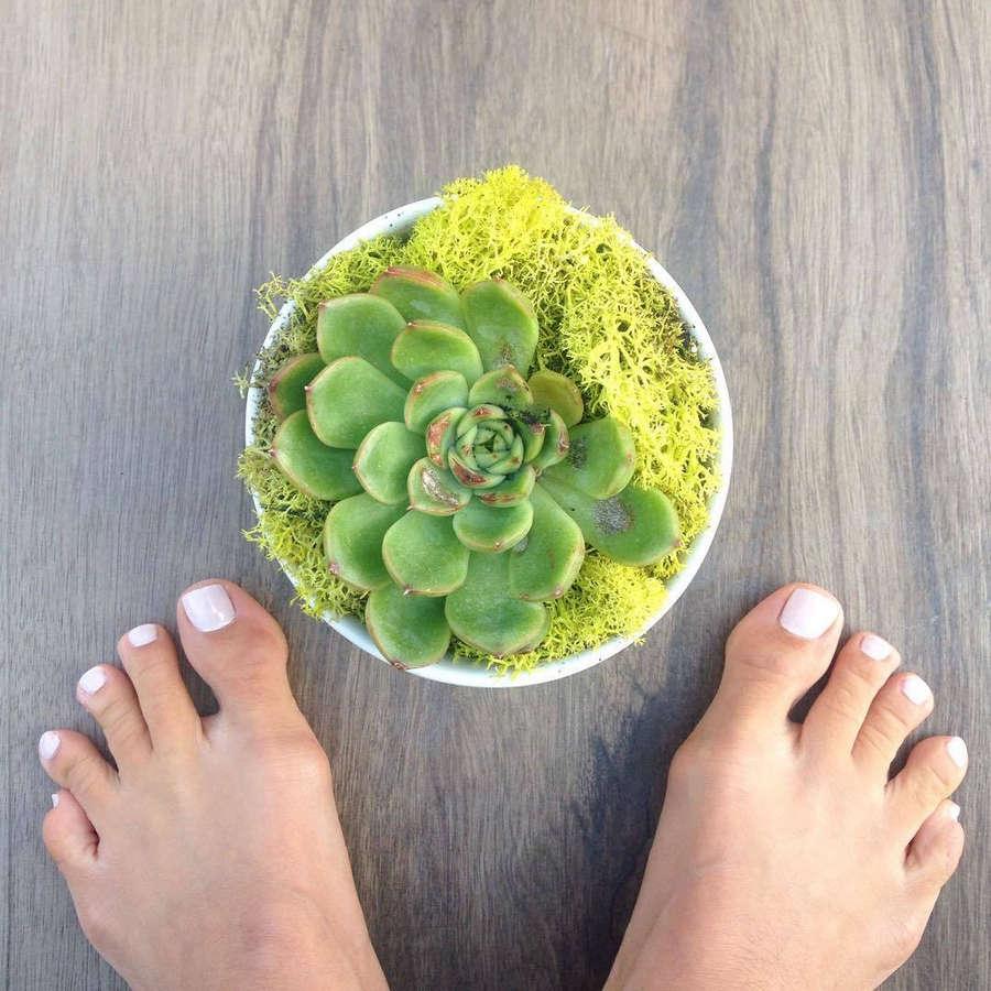 Stephanie Greco Feet