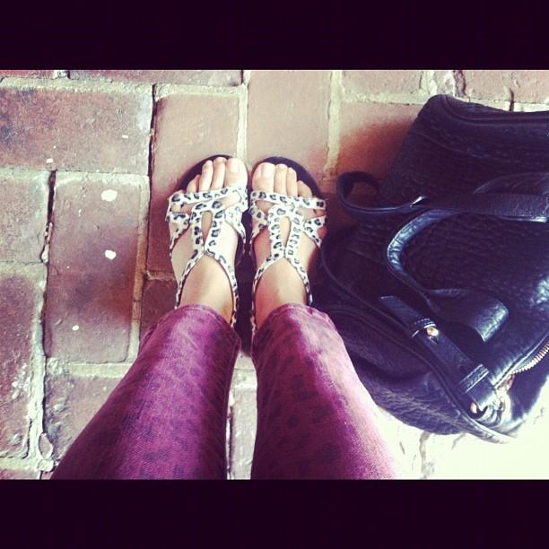 Yolanda Pecoraro Feet